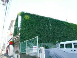 A.K-Labo_green.jpg
