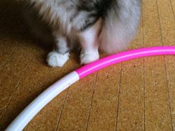 Hula Hoop2.jpg
