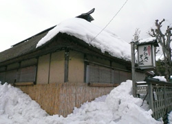 arakisoba_warabuki.jpg