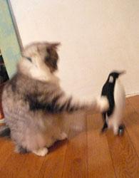 penguin_mugi2.jpg