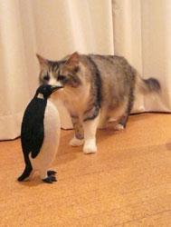 penguin_mugi4.jpg