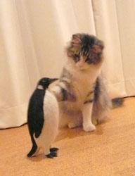 penguin_mugi6.jpg