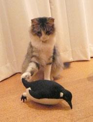 penguin_mugi7.jpg