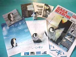 penguin_sinema.jpg