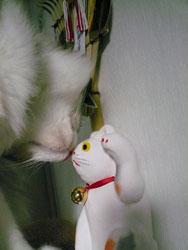 rokusyo_maneki3.jpg