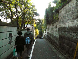 yanaka_hana.jpg